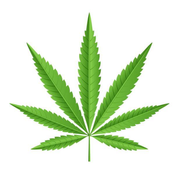 Stop Demonizing Marijuana [OPINION]